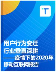 用户行为变迁 行业垂直深耕——疫情下的2020年移动互联网报告