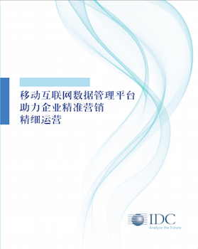 IDC-DMP白皮书