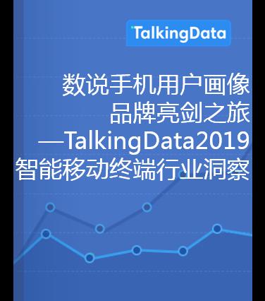 TalkingData-2019智能移动终端行业洞察